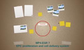 WP4-ESR 7