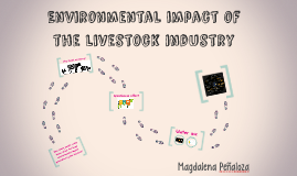 Environmental impact of  the livestock industry