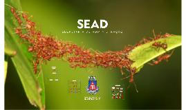 SEAD 2017