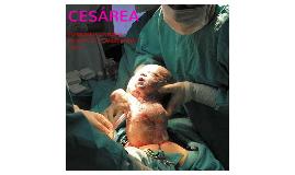 Cesarea y algo mas