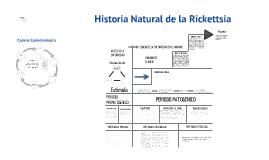 Copy of Rickettsias