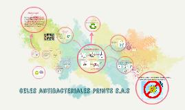 Geles antibacteriales PRINTS s.a.s