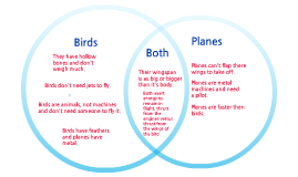 Planes and Birds