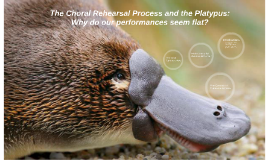 The Choral rehearsal process and the platypus: why do our pe