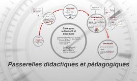 Passerelles didactiques et pédagogiques