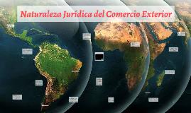 Naturaleza Jurídica del Comercio Exterior