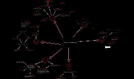 Copy of AP Bio Evolutionary Concept Map