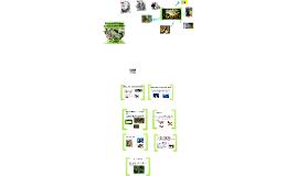 MÓDULO 2 Presentación 2.2 Selección natural y adaptaciones