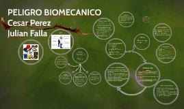 Copy of PELIGRO BIOMECANICO