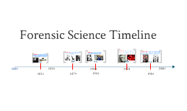 Mr. Burger's Forensics Timeline