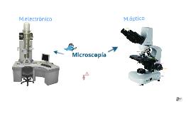 Microscopio óptico y electrónico
