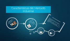 Copy of Características del Mercado Industrial