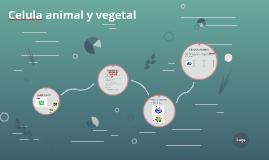 Copy of celula animal y vegetal