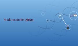 Copy of Maduración del ARNm