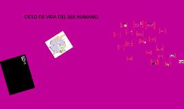 Copy of CICLO DE VIDA