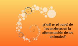 ¿Cuál es el papel de las enzimas en la alimentación de los a