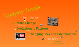 Copy of The Importance of Studying Fossils