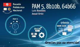 PAM 5
