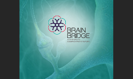 Usar versão completa -BrainBridge (Portfolio)