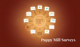 Puppy Mill Surveys