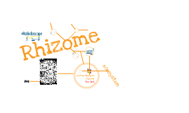 Rhizome