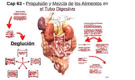 Cap 63 - Propulsión y Mezcla de los Alimentos en el Tubo Dig