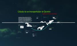Transportador de Gusano