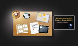 Sistema de gestión de base de datos (SGBD).