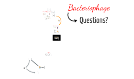 Bacteriophage Bio2160