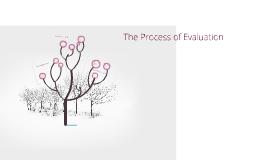 Evaluating an Organisational Development Intervention