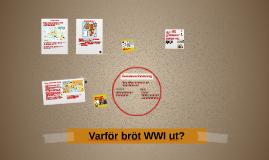 Varför bröt WWI ut?