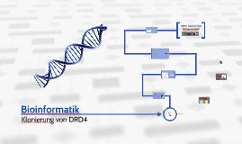 Klonierung eines Gens
