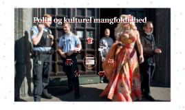 Projektseminar: Politi og kulturel mangfoldighed