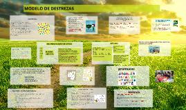 Copy of modelo de destrezas