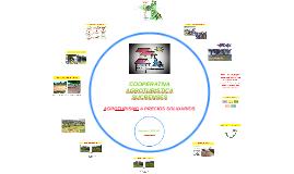Como hicimos nuestra cooperativa