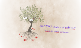 IEEE BAUN 2017-2018 DÖNEMİ