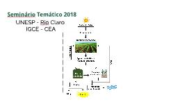 Seminário Temático 2018