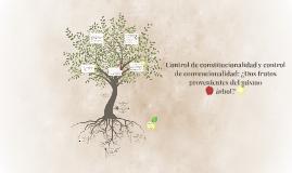Control de constitucionalidad y control de convencionalidad: