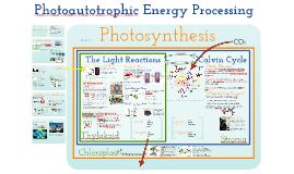 TKR_AP Bio- Energy 5:  Photoautotrophic Nutrition
