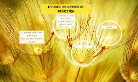 LOS DIEZ  PRINCIPIOS DE PRINCETON