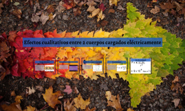Efectos cualitativos entre 2 cuerpos cargados electricamente