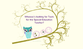 Copy of Tools for the Special Education Teacher