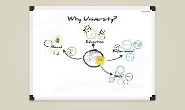 Why University?