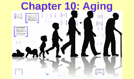 Chapter 10: Aging