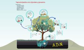 Ingeniería Genética en la Agricultura