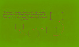 Principales criterios resolutivos adoptados en los procedimi