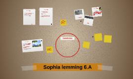 Sophia lemming 6.A