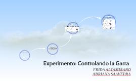 Experimento: Controlando la Garra