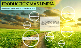 PRODUCCIÓN MÁS LIMPIA