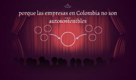 porque las empresas en Colombia no son autosostenibles